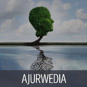 Ajurvédská metoda - Ayur Read Pro